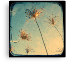 Reach for the Sky - TTV Canvas Print