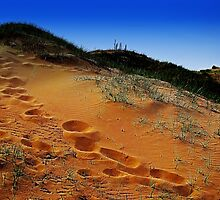 Sand dune by Spadgie