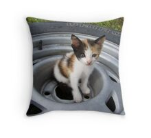 Tire Swing FAIL!!! Throw Pillow