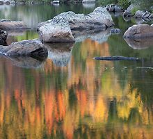 Reflection at Bear Lake  by Teresa Smith