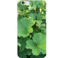 The Vegetable Garden iPhone Case/Skin