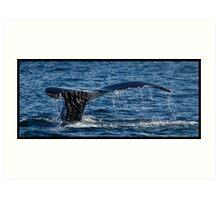 Whale Tail Art Print