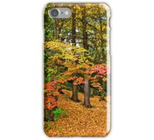 Wooded reservation iPhone Case/Skin
