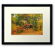 Wooded reservation Framed Print