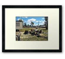 Meeting Place Loss of Moreton Bay Fig Framed Print
