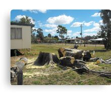Meeting Place Loss of Moreton Bay Fig Canvas Print