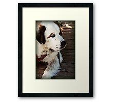 Olaf Framed Print