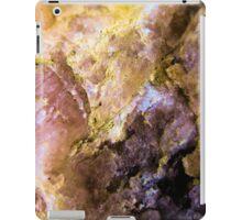 No.10 iPad Case/Skin