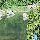 Reflections by Gene Ritchhart
