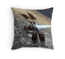 An Amazing Male Whitetail Skimmer. Throw Pillow