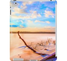 Winter landscape near a pond iPad Case/Skin