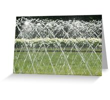 White Hydrangea behind the water screen  Greeting Card