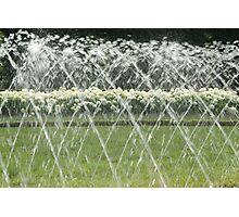 White Hydrangea behind the water screen  Photographic Print