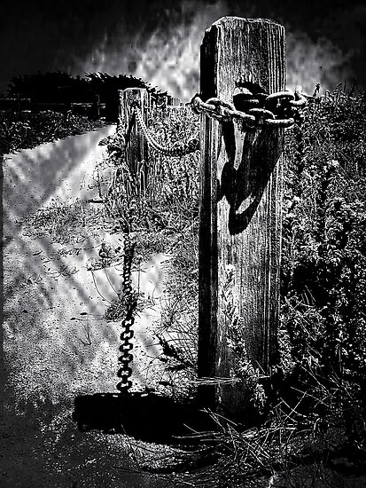 Fence Post B&W by Karirose