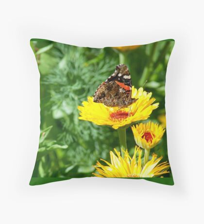 orange butterfly on a yellow daisy Throw Pillow