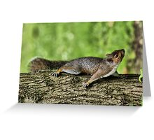 Things are Looking Up. Greeting Card