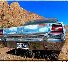 Ford Fairlane LTD 1981 by Michelle Clarke