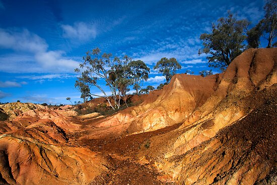 Pink Cliffs 1 - Heathcote by Hans Kawitzki