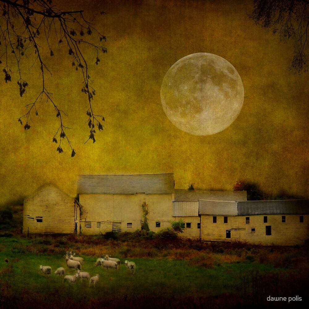 sheep under a harvest moon by dawne polis