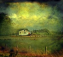 """""""The Old Shearing Shed ..."""" by Rosehaven"""
