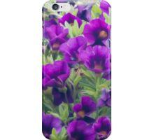 Purple Miniature Petunia Blossoms  iPhone Case/Skin