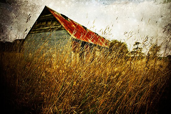 Derelict barn by Sharonroseart