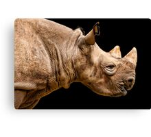 Uncompromising Strength Canvas Print