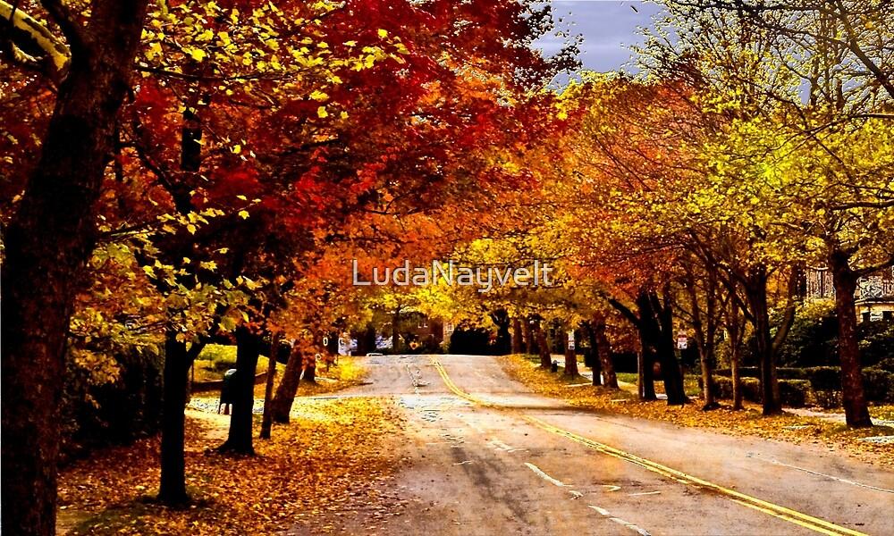 Yellow Leaves by LudaNayvelt