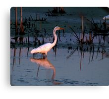 Theresa Marsh State Wildlife Area, Theresa, WI Canvas Print