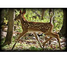 Prancing Youth Photographic Print