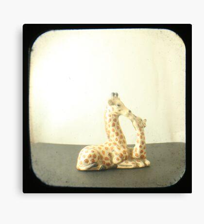 Giraffe Love TTV Canvas Print