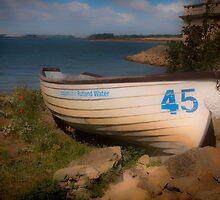 45 by Glen Allen