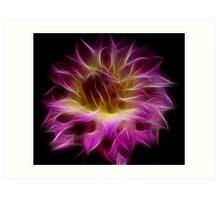 Dahlia By Design Art Print