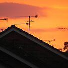 Aerials in sunset  by RobNichols
