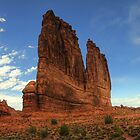 The Organ - Arches National Park by Terence Russell