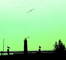 Muskegon, MI Lighthouse - Spring Green Hue by Deb  Badt-Covell