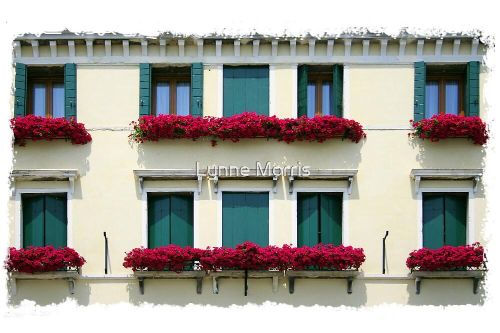Window Boxes by Lynne Morris