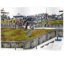 Skateboarder Poster