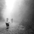 Fog Dog -Mt Fromme, winter 08 by car1edb