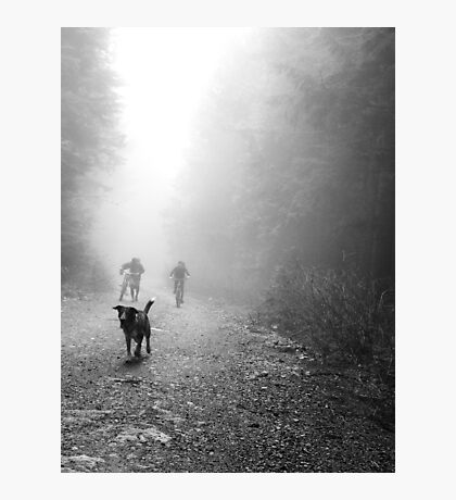Fog Dog -Mt Fromme, winter '08 Photographic Print