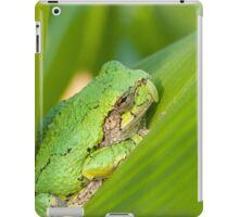 Garden Companion iPad Case/Skin