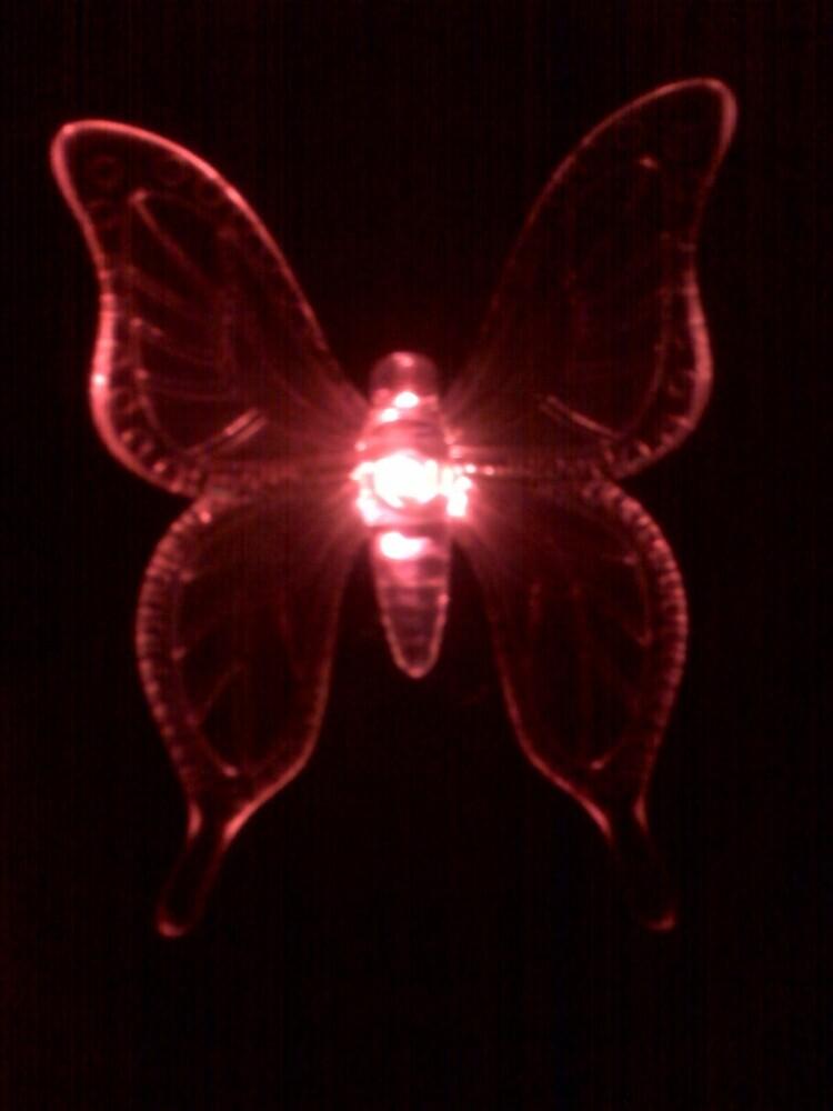 Butterfly in Pink by Dan McKenzie
