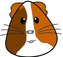 Guinea pig lover's gifts by guineapiglover