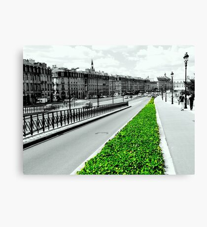 The green lung of the city Canvas Print