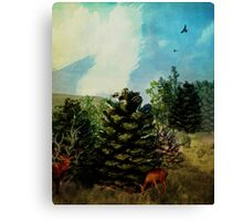 Pine Cone Forest Canvas Print