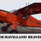 DeHavilland Beaver by Zju-Zju