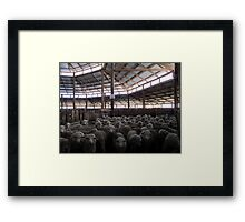 The Holding Pen - Deeargee Woolshed, Northern Tablelands, NSW, Australia Framed Print