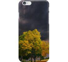 3953 iPhone Case/Skin