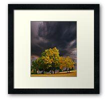 3953 Framed Print