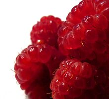 Raspberries by Marcia Rubin